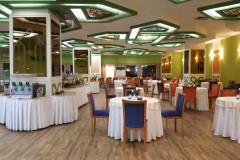 عکس سالن رستوران سبز